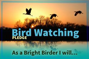 Birdwatching-Pledge