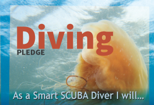 Diving-pledge