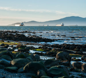 Rocky kits beach and ships - brighter and skinnier-1