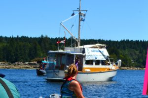 "Clean Marine BC banner on ""Salish Sea"""