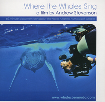 where-the-whales-sing
