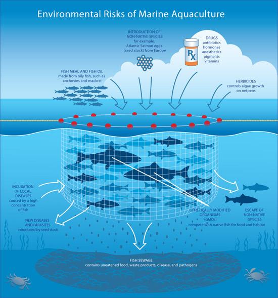 Aquaculture risks - Dr. G. Pararas Carayannis