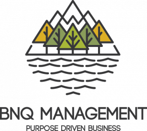 BNQ Management logo